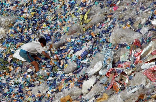 Landfill treasure