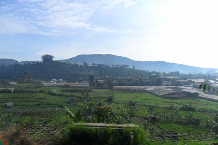 Indonesia. Isn't it beautiful?